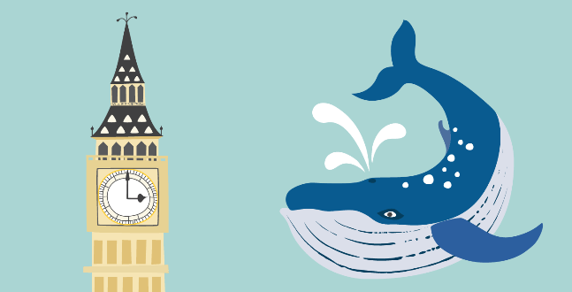 spot-illustrations of blue whale and big ben